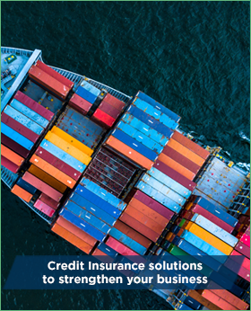 Coface: the most agile, global trade credit insurance partner in the industry.